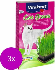 Vitakraft Cat Gras - Kattensnack - 3 x Natuur 120 g