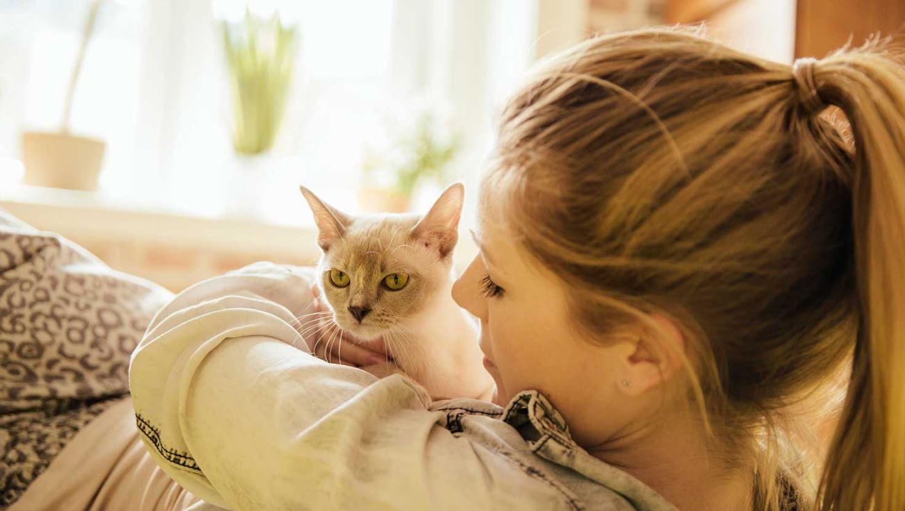 Tekenen dat je kat van je houdt