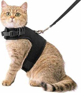 Zootic Kattenharnas met leiband - Kattentuigje - Zwart