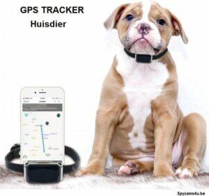 GPS Tracker Huisdier kat zonder abonnement - werkt op internet van simkaart
