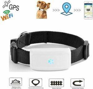 Huisdieren GPS-tracker - Anti Lost For Katten - Met kraag - Outdoor Navigation Locator Gratis APP