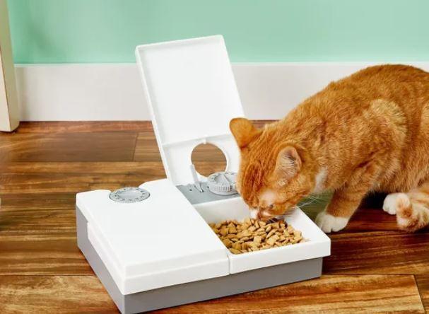 automatische voerbak kat