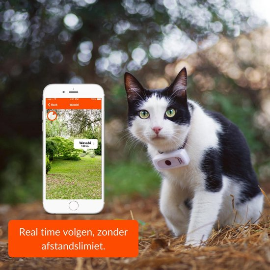 gps tracker kat