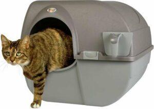 Omega Paw Zelfreinigende Kattenbak L - Bruin