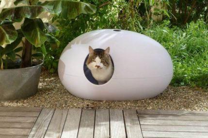 design kattenbak
